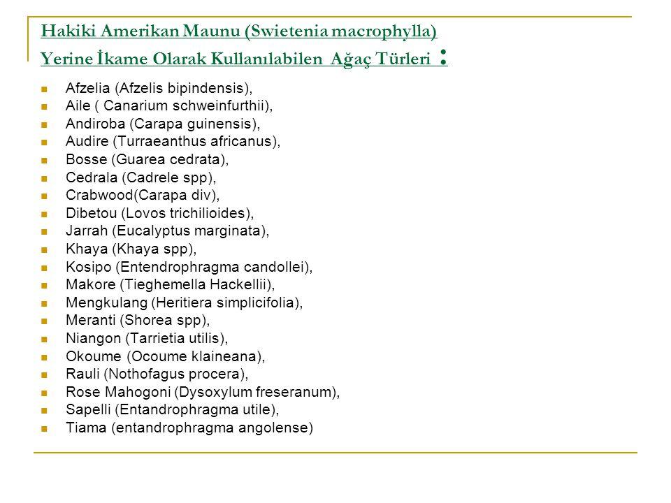Hakiki Amerikan Maunu (Swietenia macrophylla) Yerine İkame Olarak Kullanılabilen Ağaç Türleri :