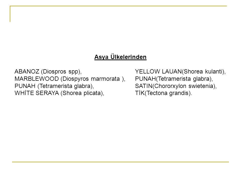 Asya Ülkelerinden ABANOZ (Diospros spp), YELLOW LAUAN(Shorea kulanti), MARBLEWOOD (Diospyros marmorata ), PUNAH(Tetramerista glabra),