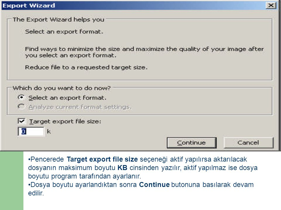 Pencerede Target export file size seçeneği aktif yapılırsa aktarılacak dosyanın maksimum boyutu KB cinsinden yazılır, aktif yapılmaz ise dosya boyutu program tarafından ayarlanır.