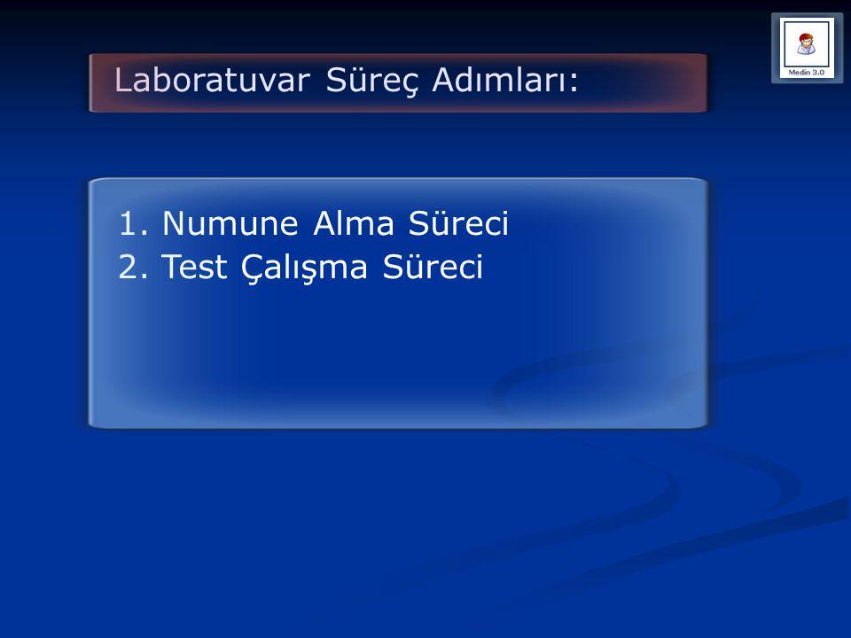 Laboratuvar Süreç Adımları: