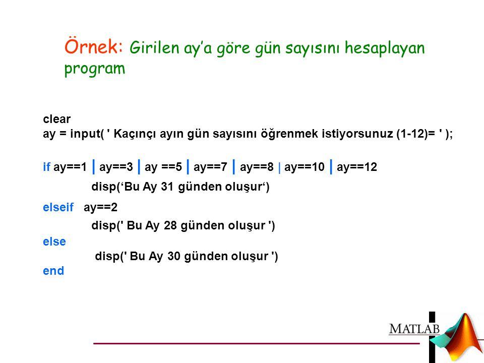 Örnek: Girilen ay'a göre gün sayısını hesaplayan program
