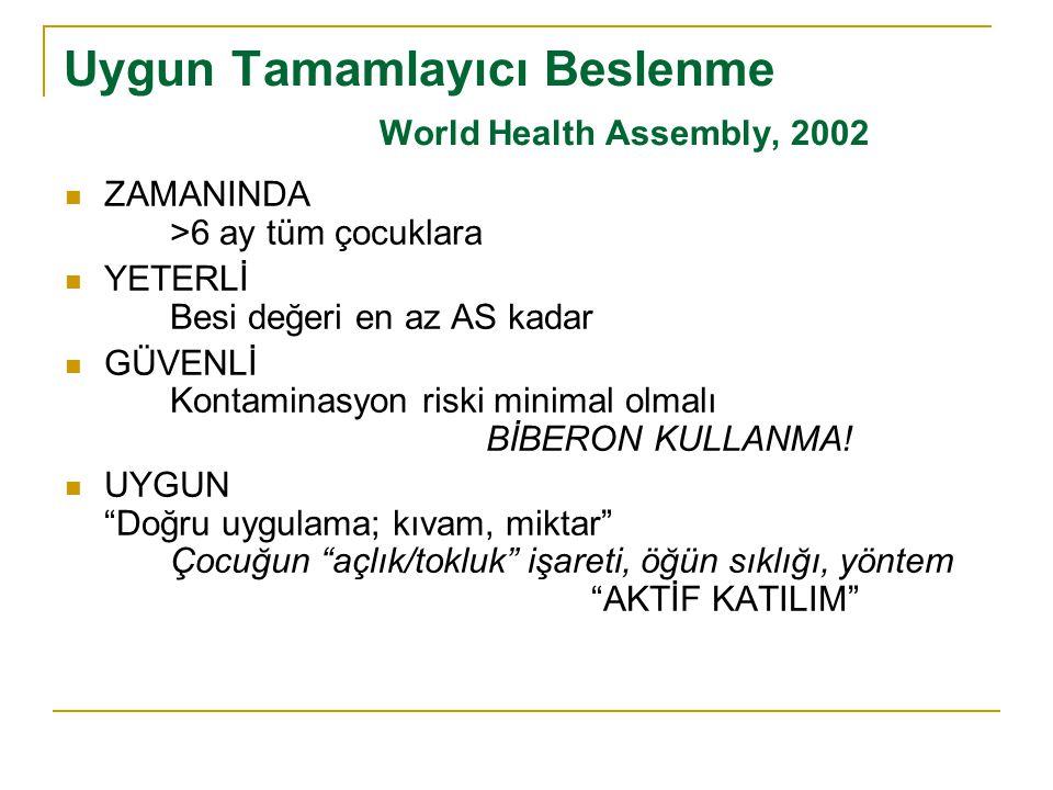 Uygun Tamamlayıcı Beslenme World Health Assembly, 2002