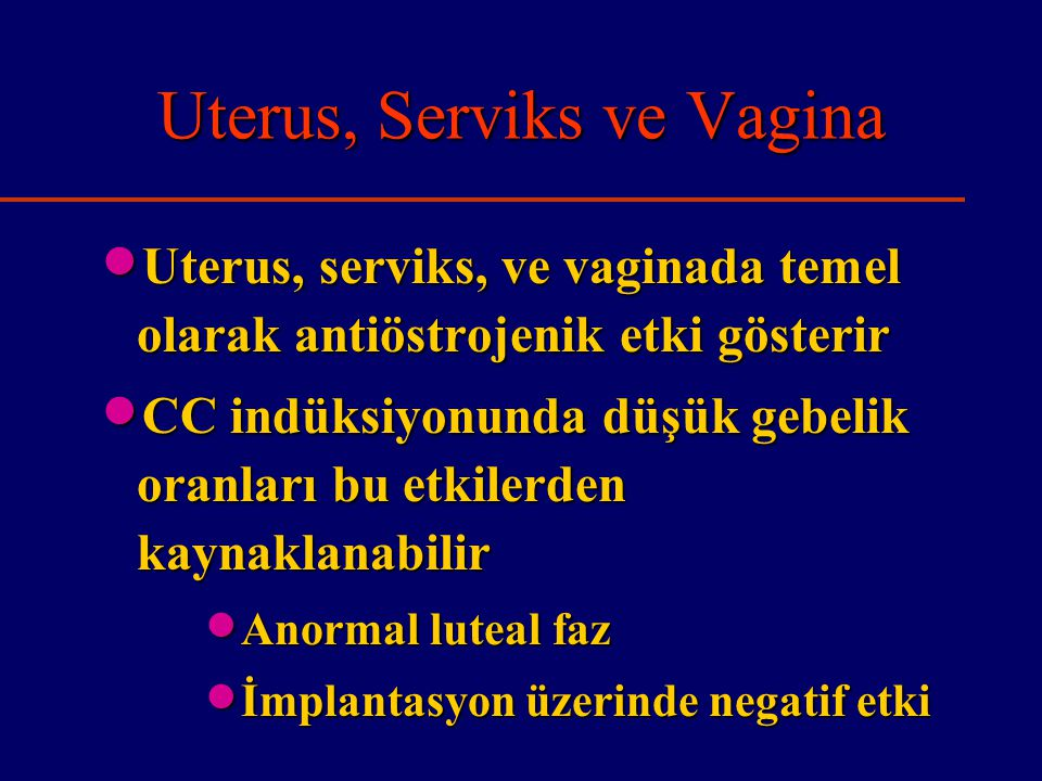 Uterus, Serviks ve Vagina