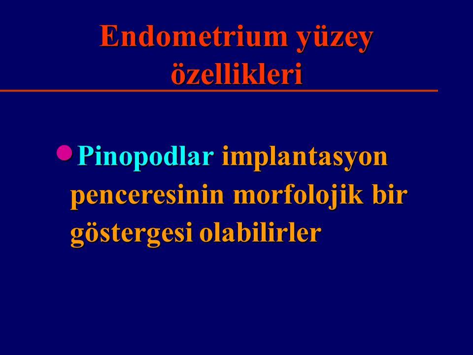 Endometrium yüzey özellikleri