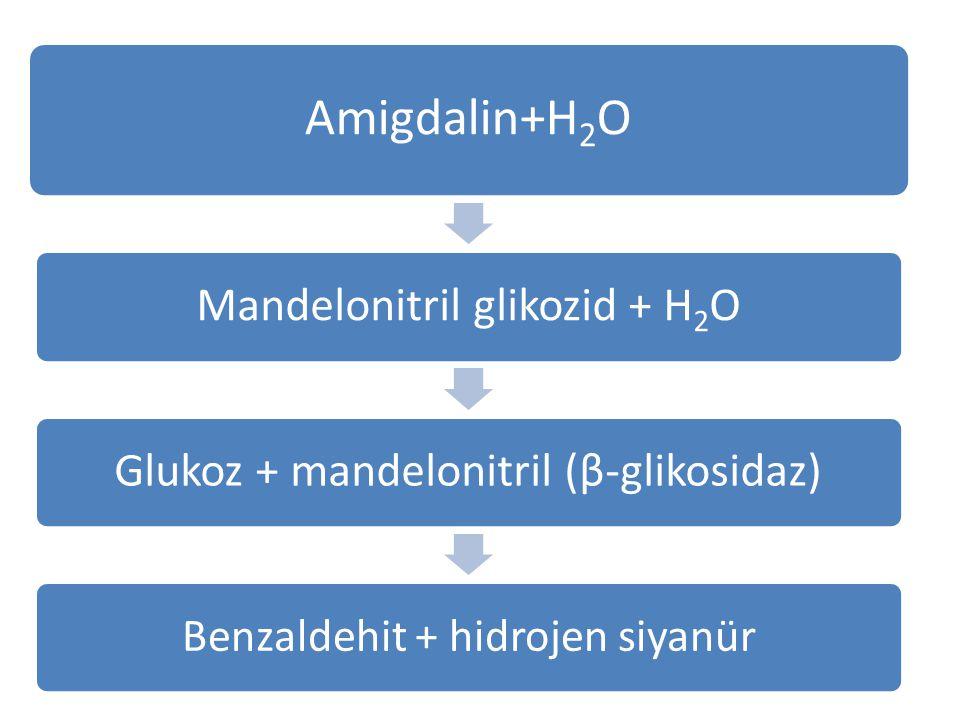 Amigdalin+H2O Mandelonitril glikozid + H2O