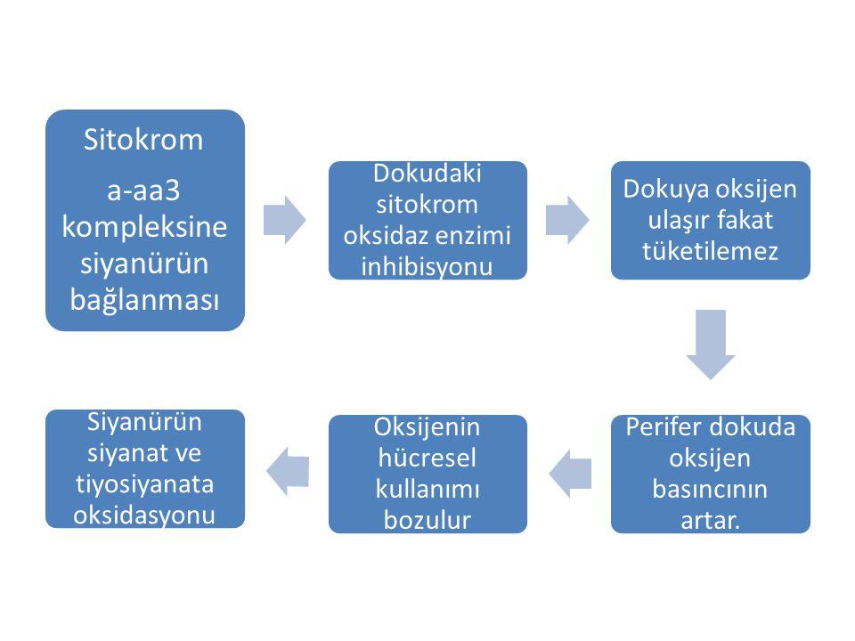 a-aa3 kompleksine siyanürün bağlanması