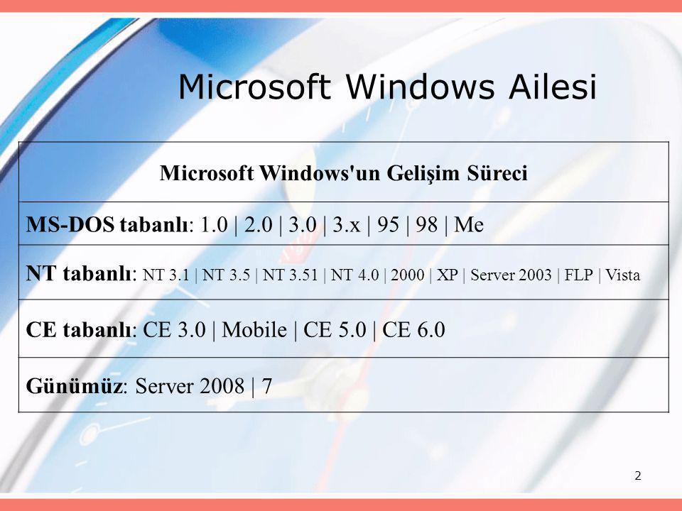Microsoft Windows Ailesi