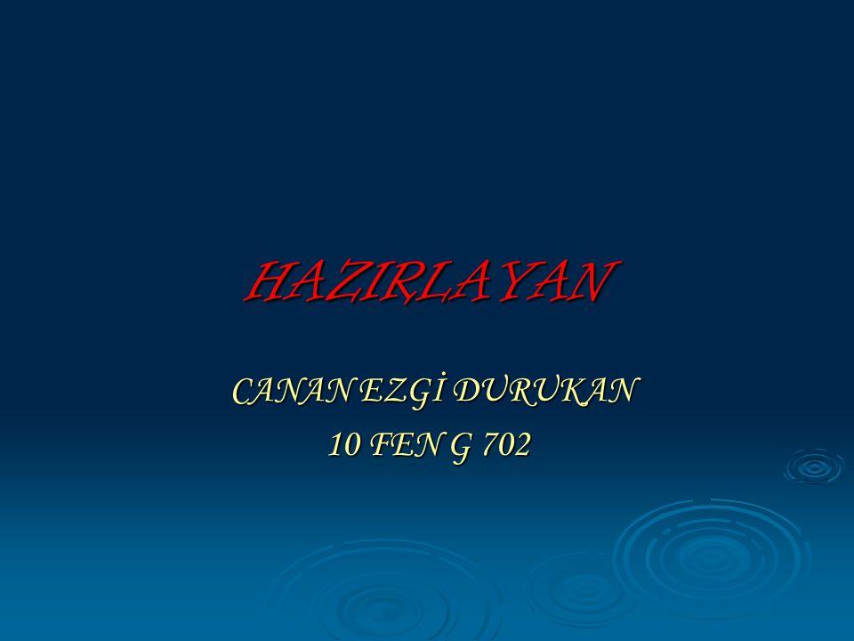 CANAN EZGİ DURUKAN 10 FEN G 702