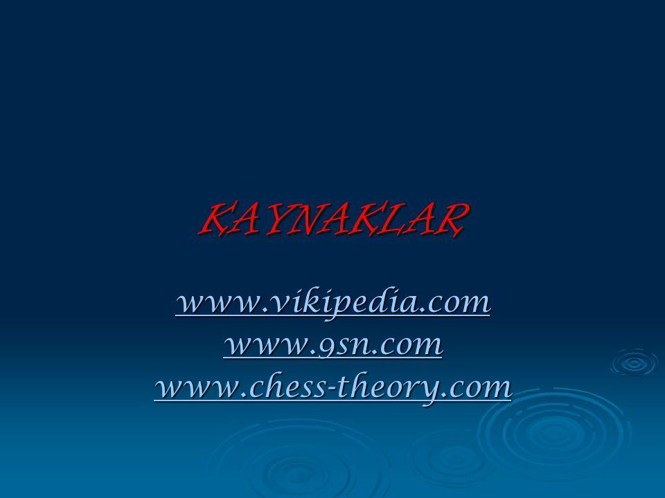 www.vikipedia.com www.9sn.com www.chess-theory.com