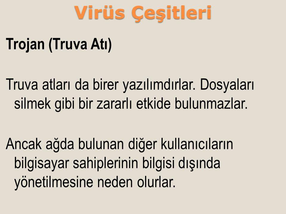 Virüs Çeşitleri