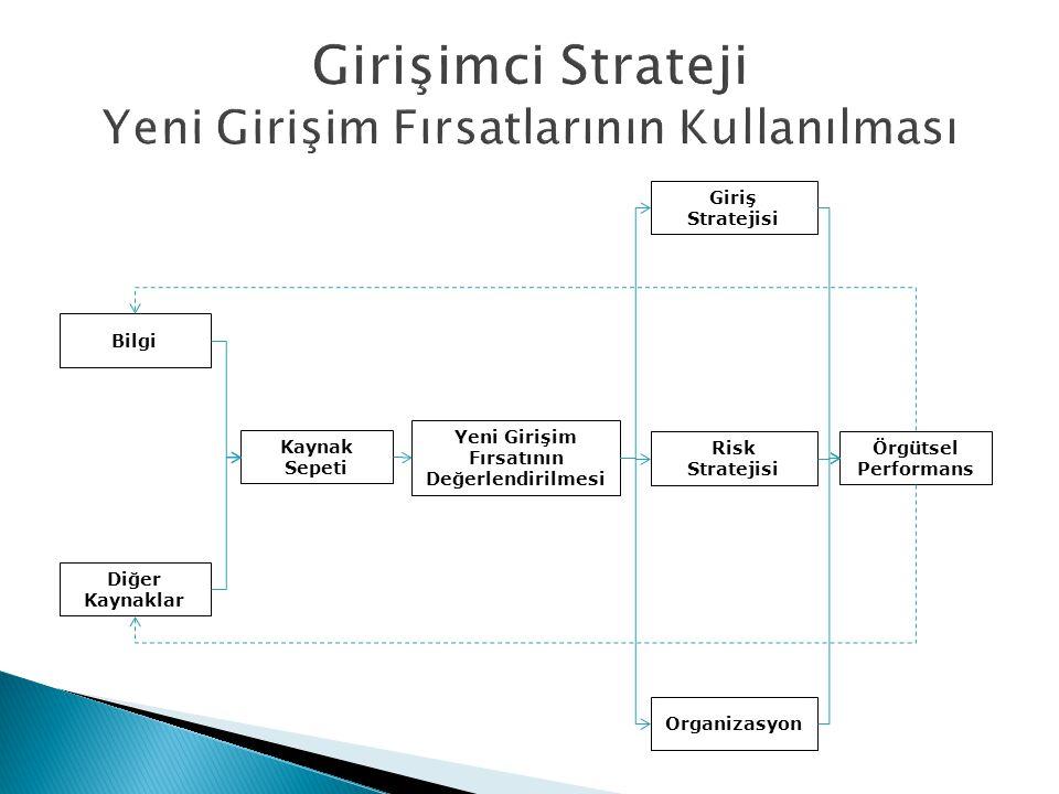 Girişimci Strateji Yeni Girişim Fırsatlarının Kullanılması