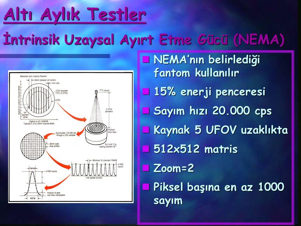 Altı Aylık Testler İntrinsik Uzaysal Ayırt Etme Gücü (NEMA)