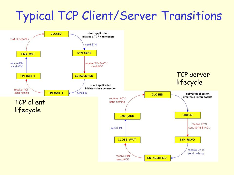 Typical TCP Client/Server Transitions