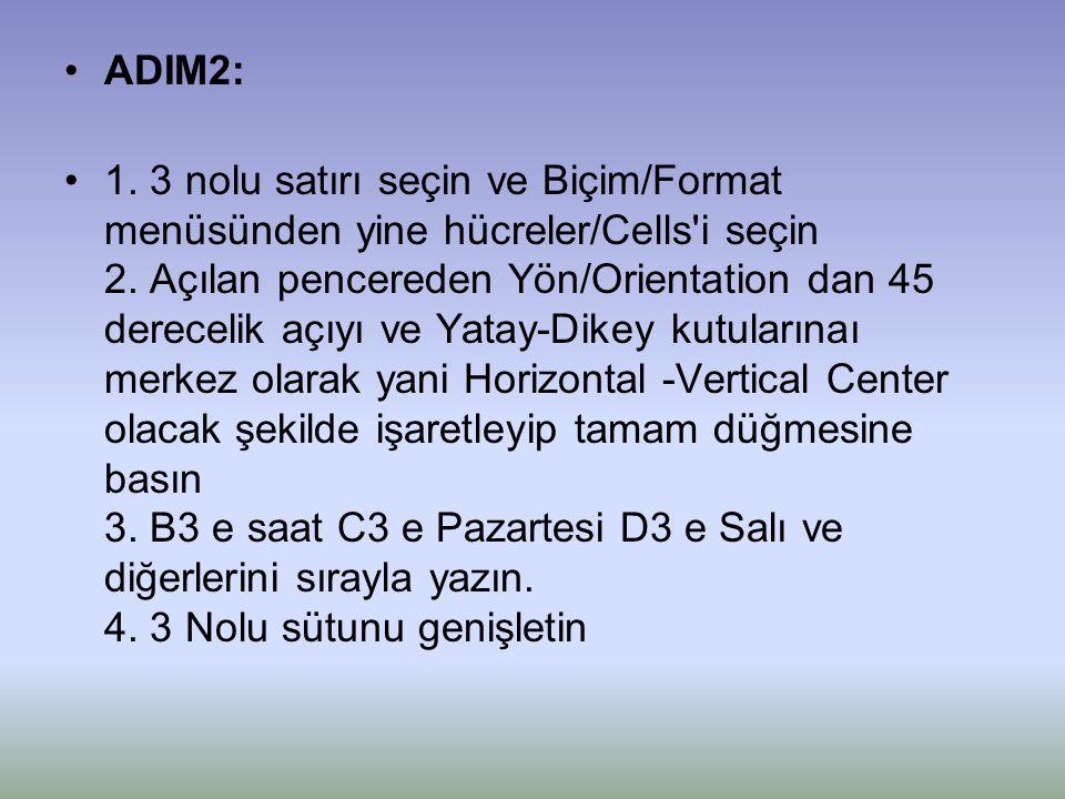 ADIM2: