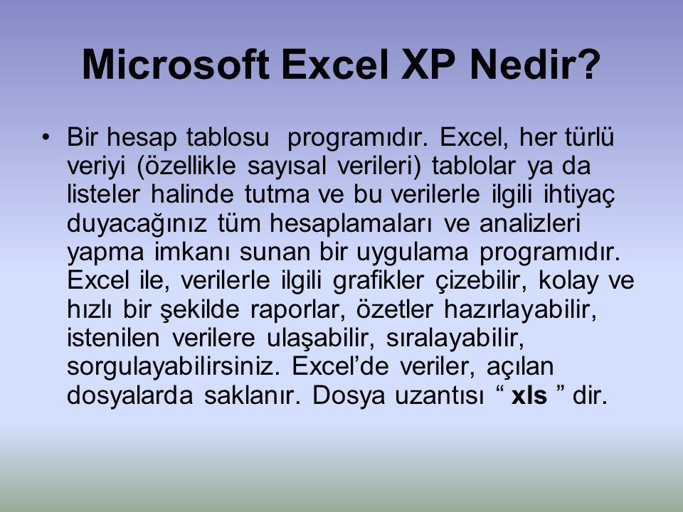 Microsoft Excel XP Nedir
