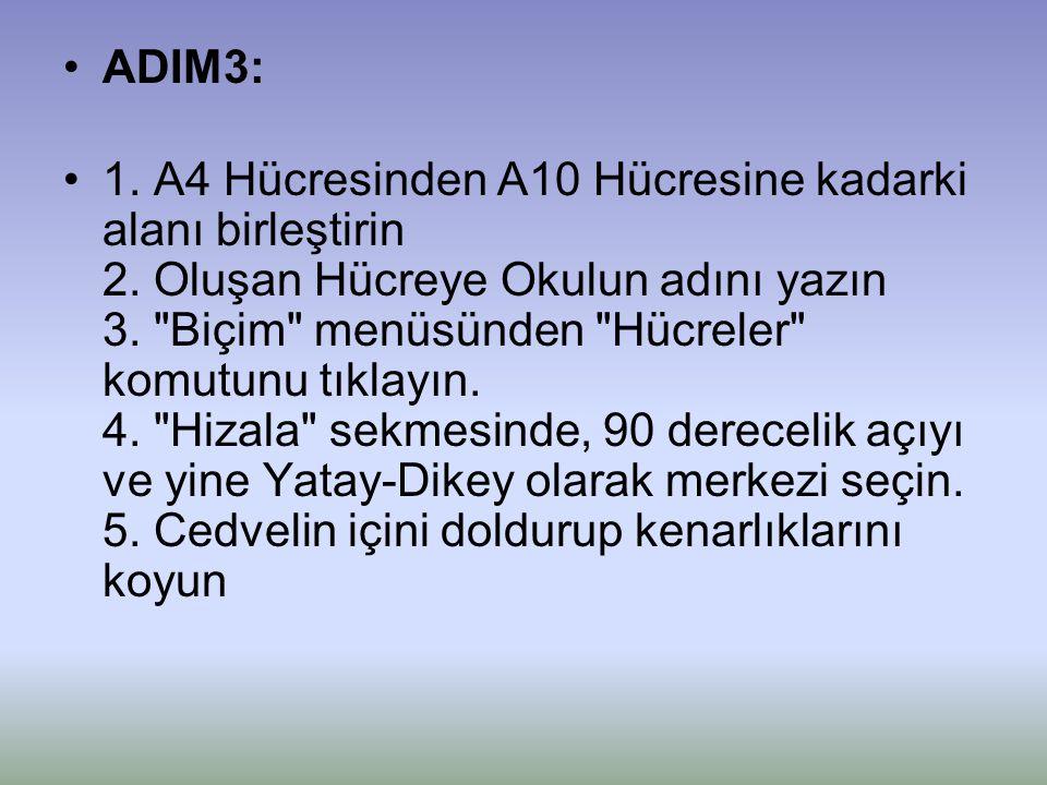 ADIM3: