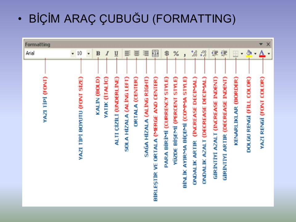 BİÇİM ARAÇ ÇUBUĞU (FORMATTING)