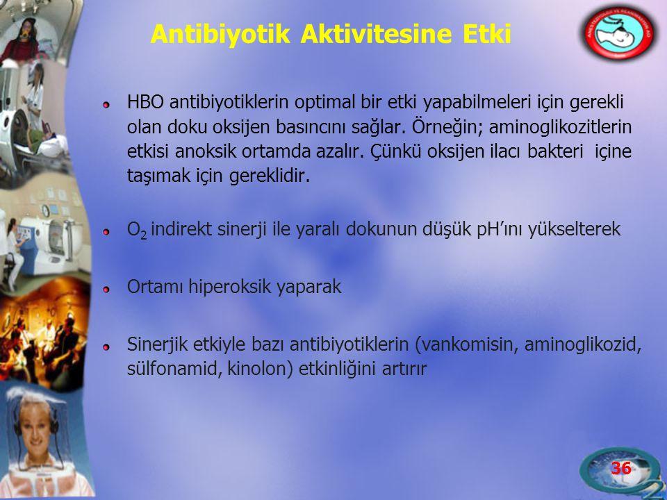 Antibiyotik Aktivitesine Etki