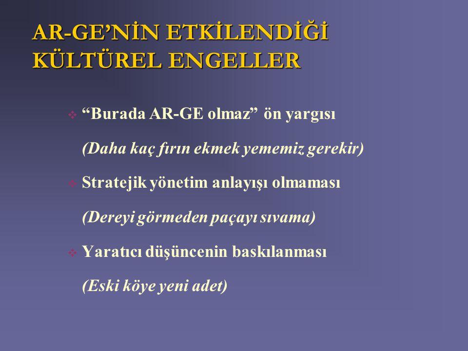 AR-GE'NİN ETKİLENDİĞİ KÜLTÜREL ENGELLER