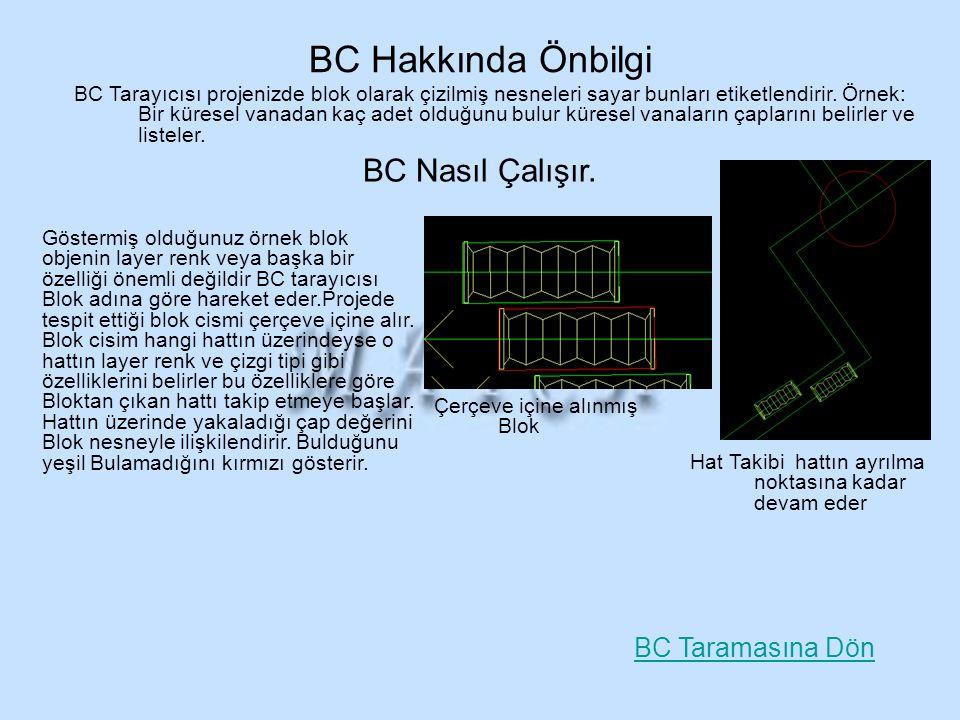 BC Hakkında Önbilgi BC Nasıl Çalışır. BC Taramasına Dön