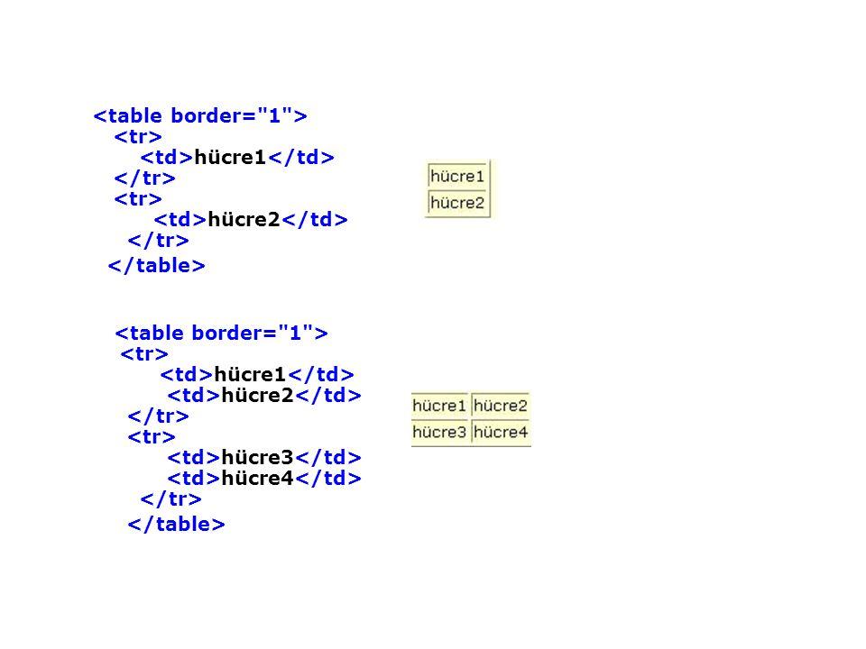 <table border= 1 > <tr> <td>hücre1</td> </tr> <tr> <td>hücre2</td> </tr> </table>