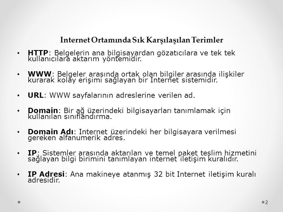 Internet Ortamında Sık Karşılaşılan Terimler