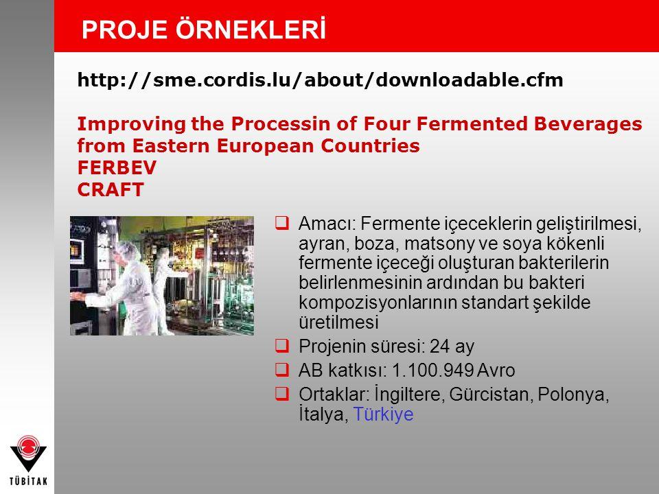 PROJE ÖRNEKLERİ http://sme.cordis.lu/about/downloadable.cfm