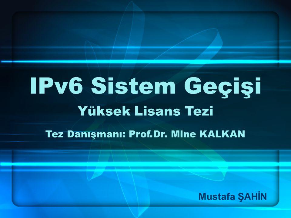 Tez Danışmanı: Prof.Dr. Mine KALKAN