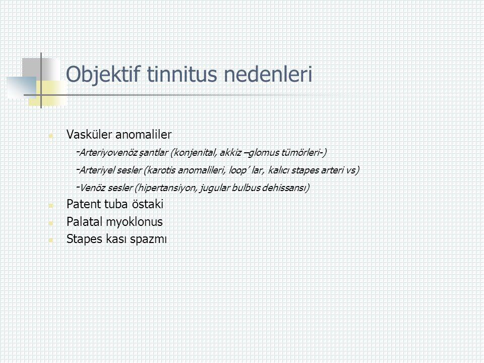 Objektif tinnitus nedenleri