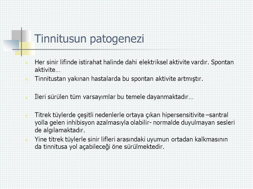 Tinnitusun patogenezi