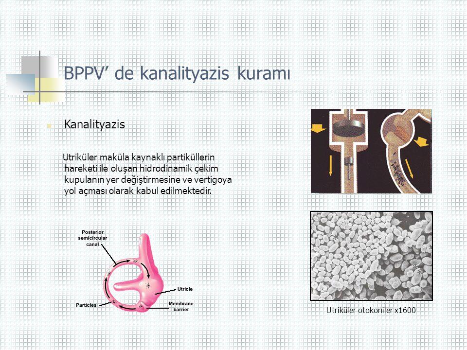 BPPV' de kanalityazis kuramı
