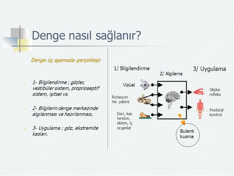 Denge nasıl sağlanır Denge üç aşamada gerçekleşir 3/ Uygulama