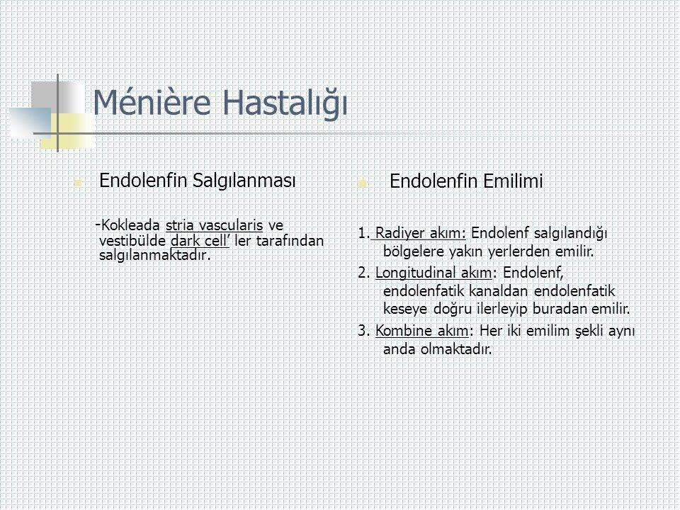Ménière Hastalığı Endolenfin Emilimi Endolenfin Salgılanması