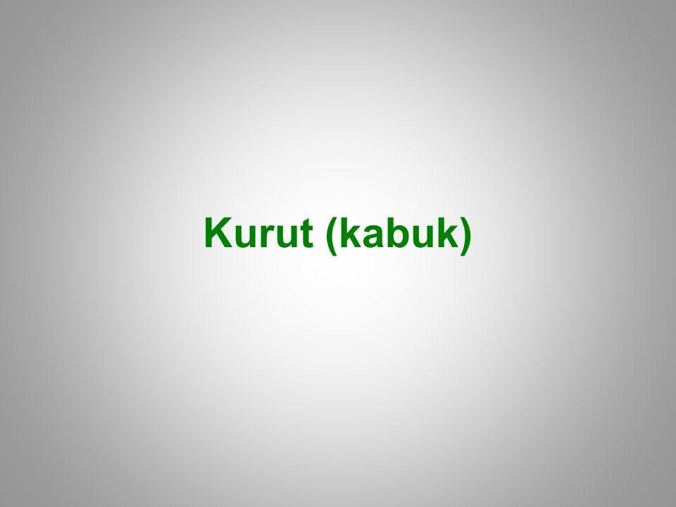 Kurut (kabuk)