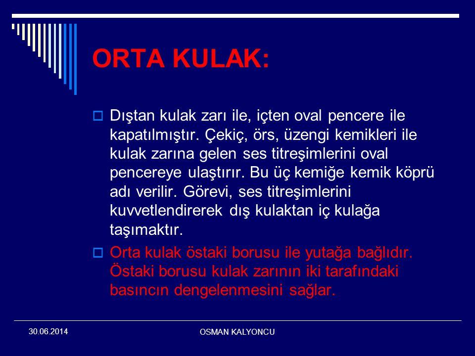 ORTA KULAK: