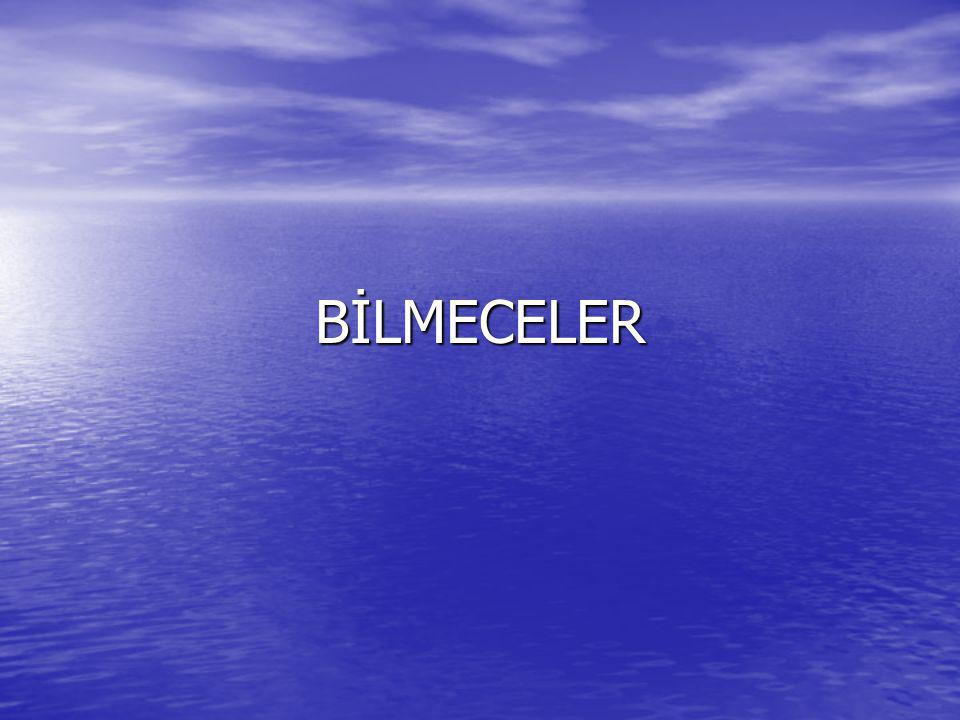 BİLMECELER