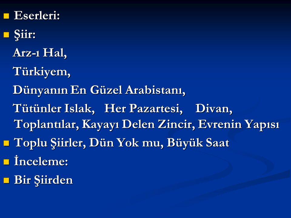 Eserleri: Şiir: Arz-ı Hal, Türkiyem, Dünyanın En Güzel Arabistanı,