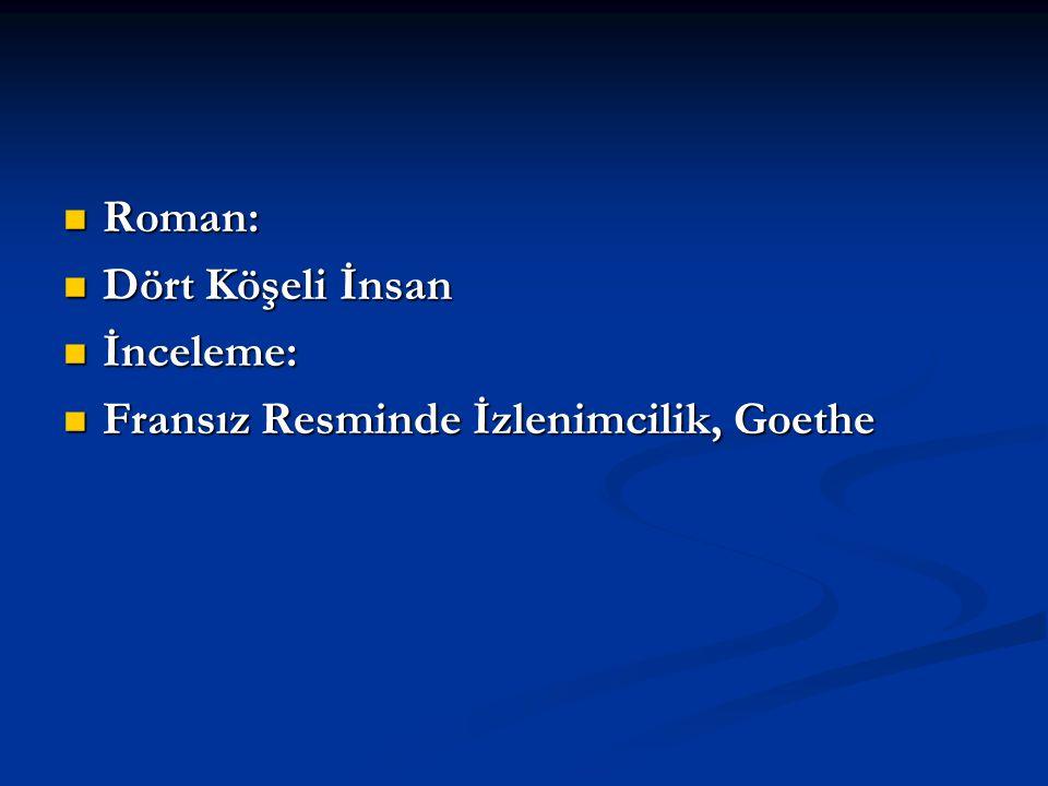 Roman: Dört Köşeli İnsan İnceleme: Fransız Resminde İzlenimcilik, Goethe