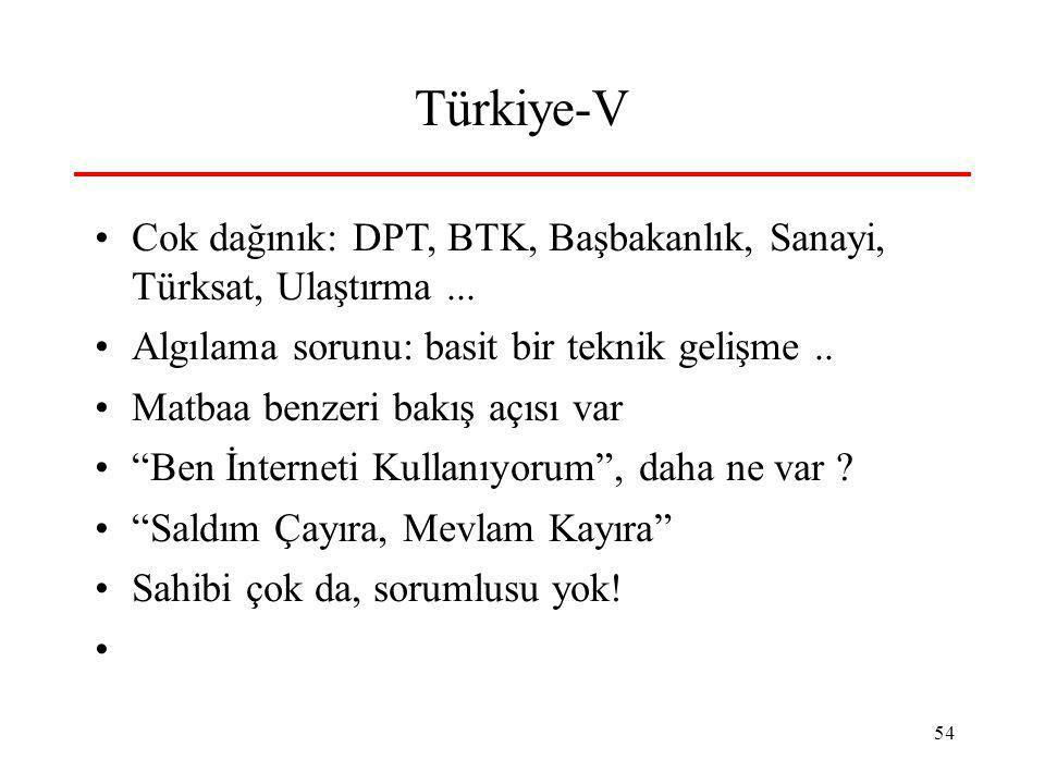 Türkiye-V Cok dağınık: DPT, BTK, Başbakanlık, Sanayi, Türksat, Ulaştırma ... Algılama sorunu: basit bir teknik gelişme ..
