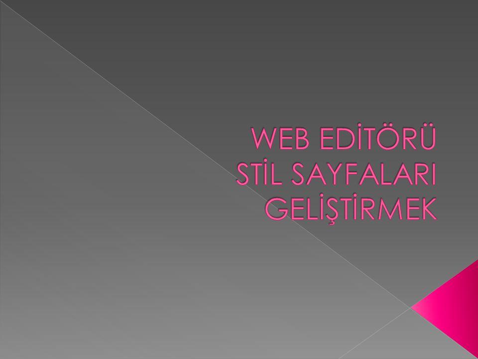 WEB EDİTÖRÜ STİL SAYFALARI GELİŞTİRMEK