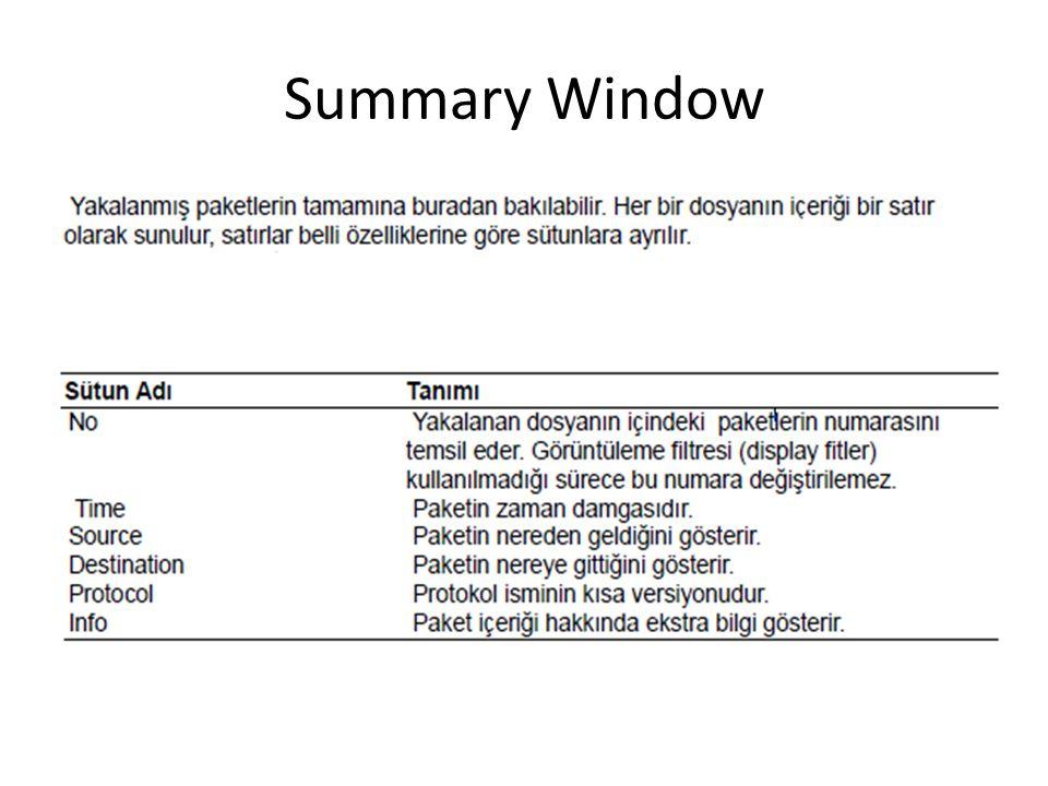 Summary Window
