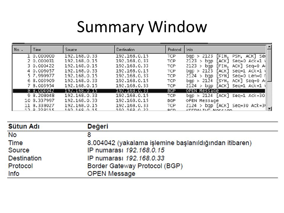 Summary Window