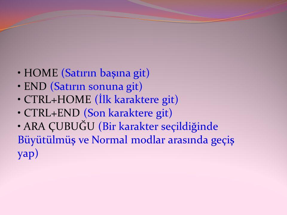 • HOME (Satırın başına git) • END (Satırın sonuna git) • CTRL+HOME (İlk karaktere git) • CTRL+END (Son karaktere git) • ARA ÇUBUĞU (Bir karakter seçildiğinde Büyütülmüş ve Normal modlar arasında geçiş yap)