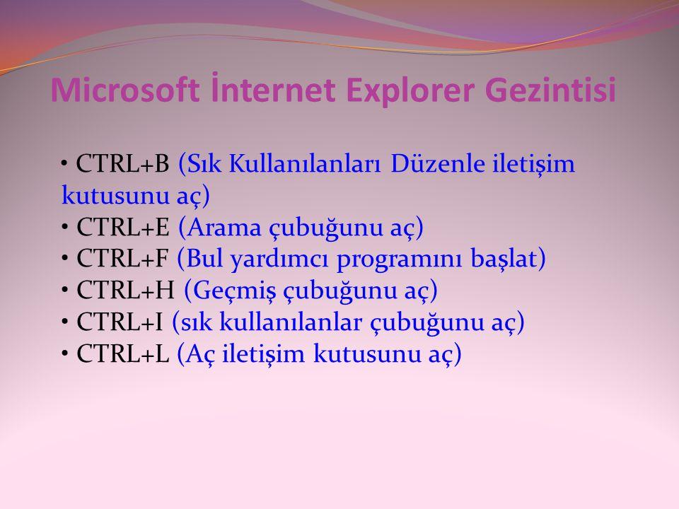 Microsoft İnternet Explorer Gezintisi