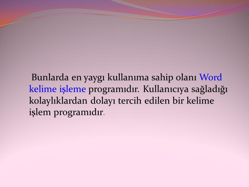 Bunlarda en yaygı kullanıma sahip olanı Word kelime işleme programıdır