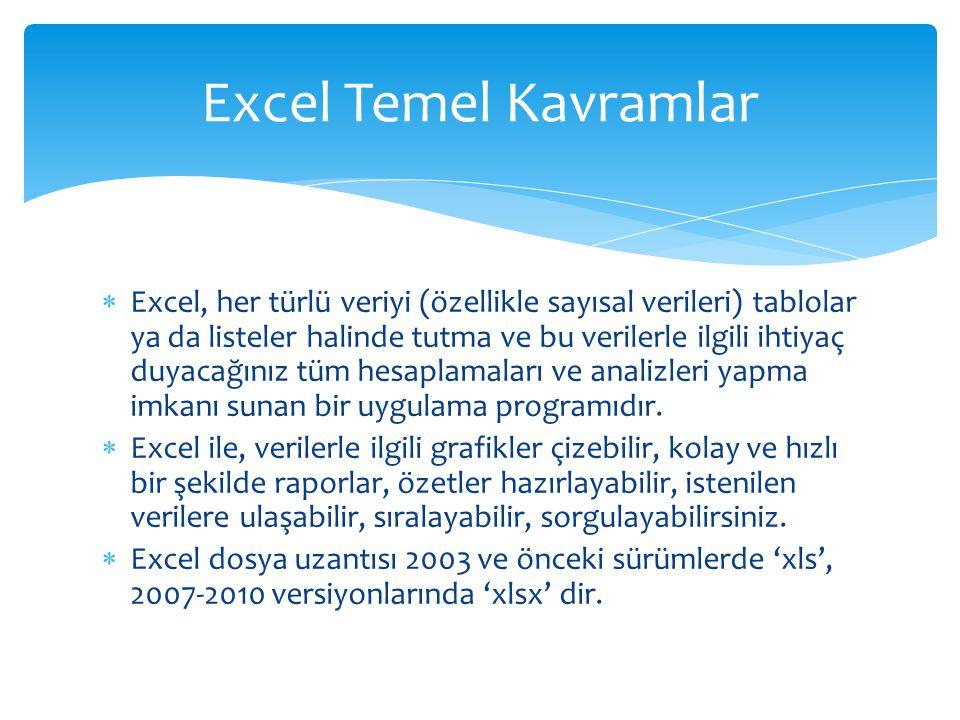 Excel Temel Kavramlar