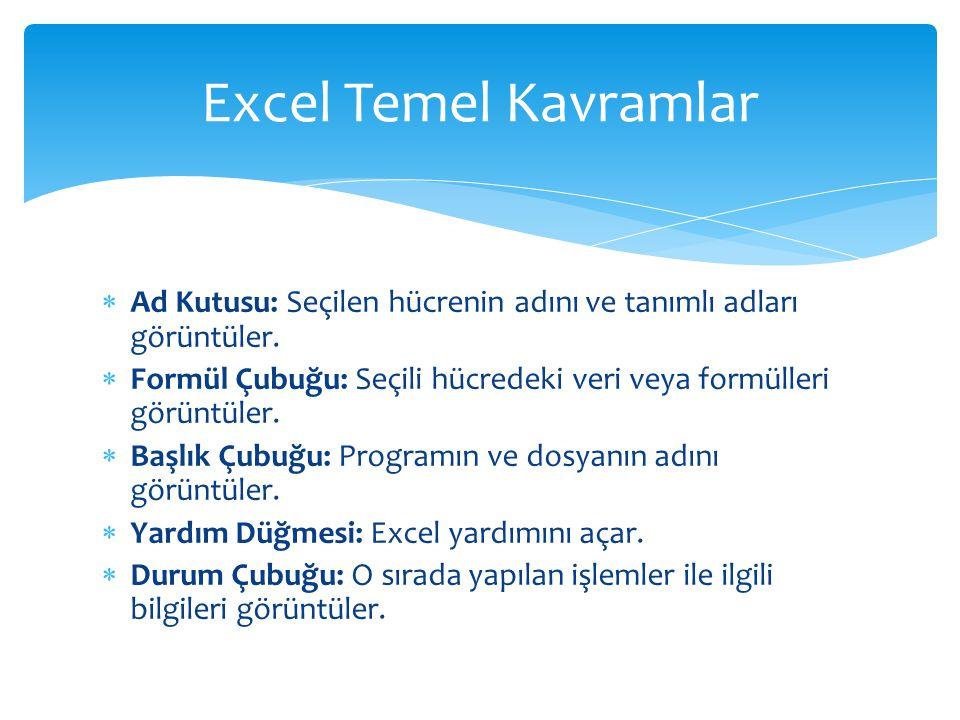 Excel Temel Kavramlar Ad Kutusu: Seçilen hücrenin adını ve tanımlı adları görüntüler.