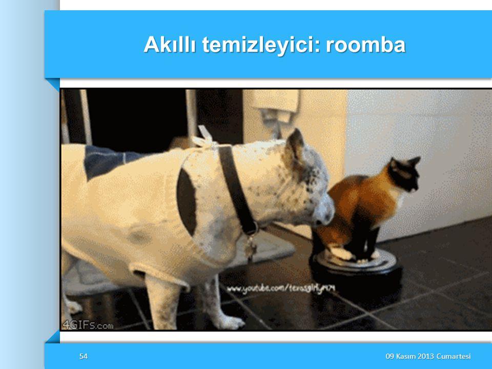 Akıllı temizleyici: roomba