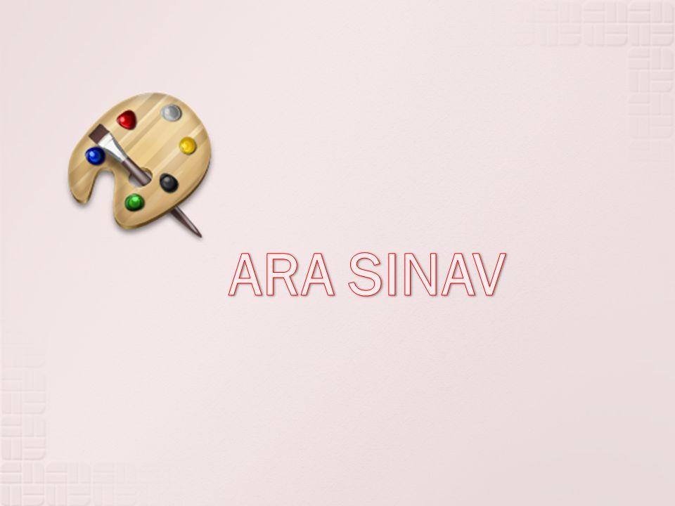 ARA SINAV
