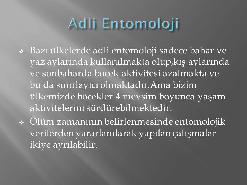 Adli Entomoloji